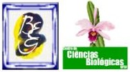 Logo BEG CCB cut